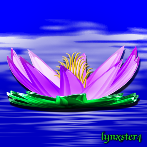 50_waterlily_shape3D.png