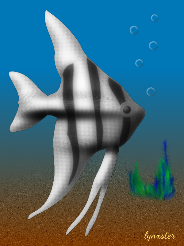 63_angelfish.png
