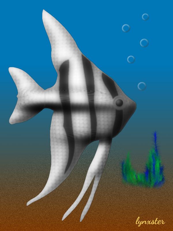 63_angelfish.png